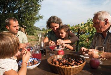 """Zu einer gelungenen Familienwanderung im Herbst gehört nicht nur mildes Herbstwetter, sondern auch das anschließende """"Törggelen"""" bei  Speck, Käse, Wein und Kastanien."""